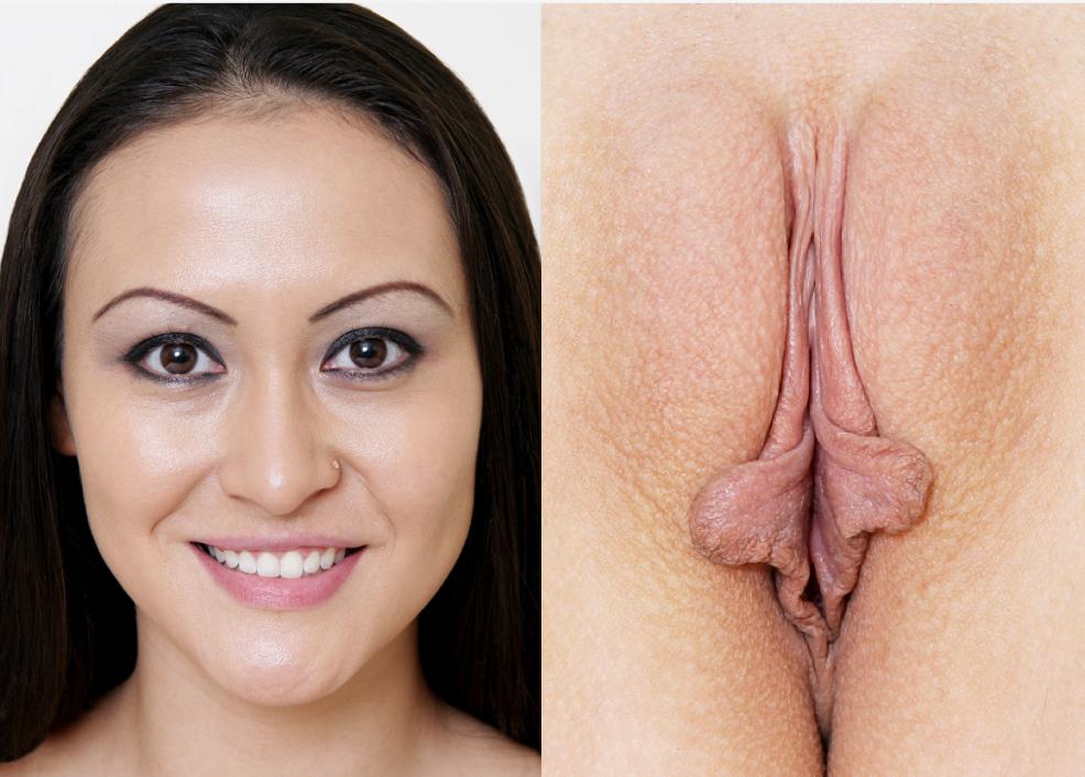 pussy book Vagina
